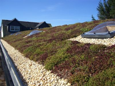 Green Roofing in Wakefield